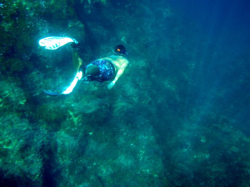 Naturaleza Marina en calas de Hagar Qim
