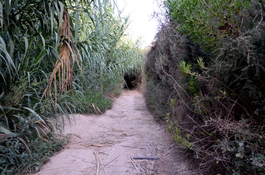 camino perdido en Camboya